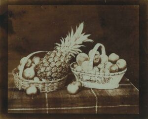 Food_Photography_Williams_Henry_Fox_Talbot_food_Photography